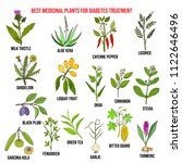 herbs and spices that fight... | Shutterstock .eps vector #1122646496
