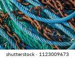abstract of various blue  green ... | Shutterstock . vector #1123009673