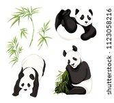 set of panda bears. vector... | Shutterstock .eps vector #1123058216