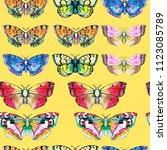 butterfly watercolor... | Shutterstock . vector #1123085789