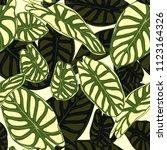 seamless tropical pattern.... | Shutterstock .eps vector #1123164326