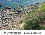 odessa coast without pebbles ... | Shutterstock . vector #1123168106