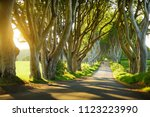the dark hedges  an avenue of... | Shutterstock . vector #1123223990