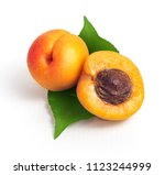 fresh yellow apricots with... | Shutterstock . vector #1123244999