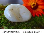 large agate palm stone  tumbled ... | Shutterstock . vector #1123311134