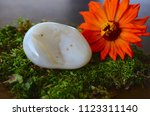 large agate palm stone  tumbled ... | Shutterstock . vector #1123311140