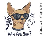 t shirt design with sphinx cat...   Shutterstock .eps vector #1123349414