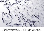 world map and networking.3d... | Shutterstock . vector #1123478786