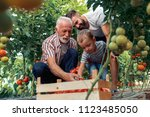 grandfather son and grandson... | Shutterstock . vector #1123485050