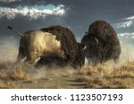 Two Massive American Buffalo Go ...