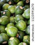 baby zucchini background   Shutterstock . vector #1123591670