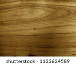 teak wood  tectona grandis ... | Shutterstock . vector #1123624589