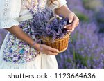 basket with lavender flowers in ... | Shutterstock . vector #1123664636