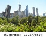 central park in new york  usa | Shutterstock . vector #1123775519