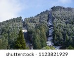 beautiful landscape covered in... | Shutterstock . vector #1123821929