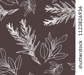 rosemary and sage watercolor... | Shutterstock . vector #1123826936