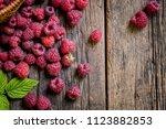 ripe  freshly picked... | Shutterstock . vector #1123882853