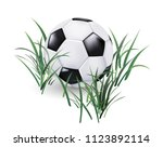 soccer ball in the grass vector ... | Shutterstock .eps vector #1123892114