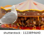 a seagull look at the carousel...   Shutterstock . vector #1123894640