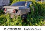 car wreck and evening light | Shutterstock . vector #1123907138