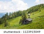 lush green high altitude summer ... | Shutterstock . vector #1123915049