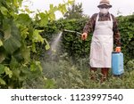 male farmer with hat  glasses ... | Shutterstock . vector #1123997540