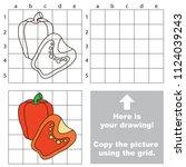 paprika half  the educational... | Shutterstock .eps vector #1124039243