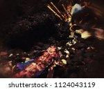 red sea fish  grunge blurry... | Shutterstock . vector #1124043119