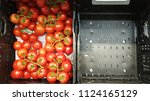 close up of cherry tomatoes in... | Shutterstock . vector #1124165129