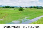green field in the village.... | Shutterstock . vector #1124169206