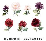 watercolor burgundy flowers.... | Shutterstock . vector #1124335553