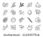 Spices And Herbs Icon Set....