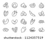 Nuts  Seeds And Beans Icon Set...