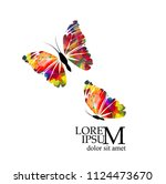 abstract picturesque butterfly | Shutterstock .eps vector #1124473670