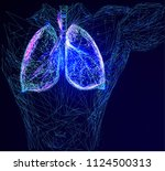 abstract image of a human lungs ... | Shutterstock .eps vector #1124500313