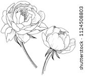 peony flower in a vector style... | Shutterstock .eps vector #1124508803