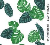 seamless hand drawn botanical... | Shutterstock .eps vector #1124598263