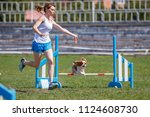 small dog with handler jumping...