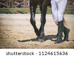 Stock photo leading horse on dressage competition man with leather boots walking with horse in paddock 1124615636