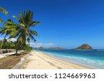 green palm trees on white sand... | Shutterstock . vector #1124669963
