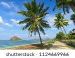 sandy road along the ocean... | Shutterstock . vector #1124669966
