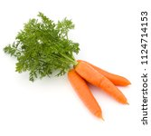 carrot vegetable with leaves... | Shutterstock . vector #1124714153