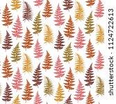 fern frond herbs  tropical... | Shutterstock .eps vector #1124722613