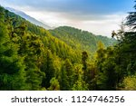 forested mountain slope with... | Shutterstock . vector #1124746256