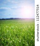 green grass | Shutterstock . vector #112477514