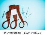 hairdresser concept  false hair ... | Shutterstock . vector #1124798123