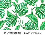 tropical leaves  jungle leaf ... | Shutterstock .eps vector #1124894180