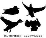 Illustration With Ducks...