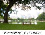 blurred park green garden... | Shutterstock . vector #1124955698