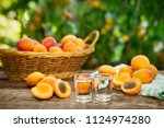 shot glass with apricot alcohol ... | Shutterstock . vector #1124974280